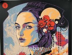 Dave Matthews Band Chicago Poster 2021 ken taylor art