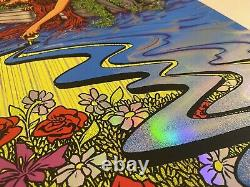 Dave Matthews Band Everyday Song Poster Rainbow Foil X/300 Signed James Flames