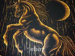 Dave Matthews Band Poster 5/15/2015 Gexa Pavilion Dallas TX Signed A/P #/80