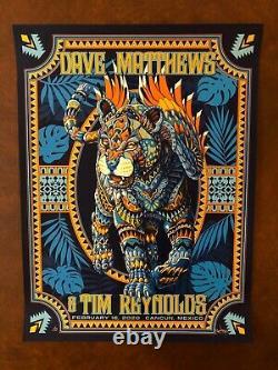 Dave Matthews and Tim Reynolds Mexico N3 Bioworkz AP blue DMB Jaguar poster Kwok